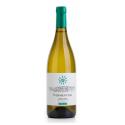 Fattoria Fibbiano Vermentino Toscano Toscana Bianco IGP 2020 Fattoria Fibbiano White Wines 12,99€