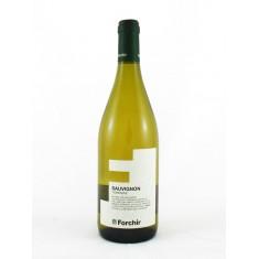 Forchir Sauvignon 2020 Forchir White Wines 6,50€